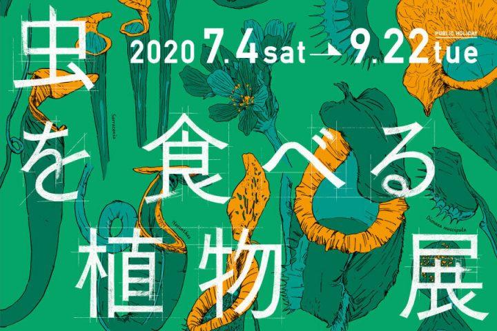 食虫植物展2020