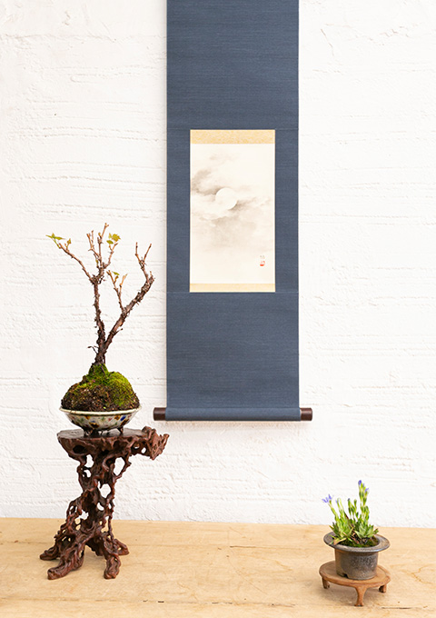 盆栽摆在壁龛装饰